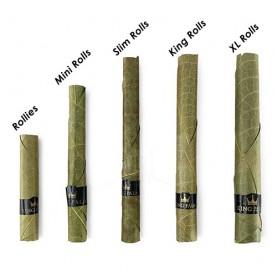 Blunty King Palm 2 Mini Rolls