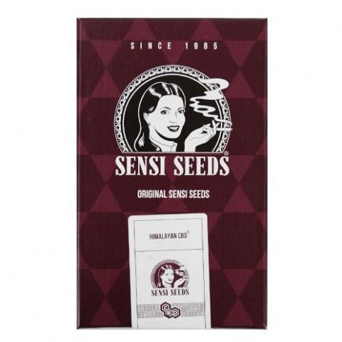 Himalayan CBD feminized (3 semienka) - Semená marihuany Sensi Seeds