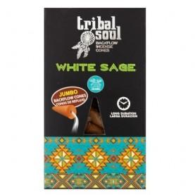 Vonné kužele s dierkou Backflow Tribal Soul - Biela šalvia