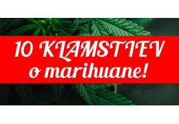 Desať klamstiev o marihuane